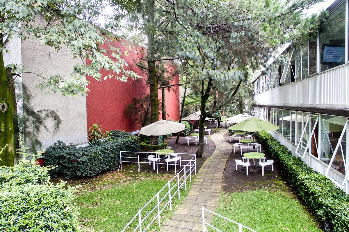Jardín Colegio Chimalistac